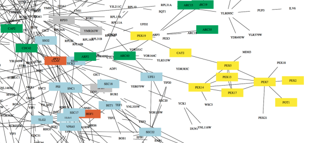 graph_network
